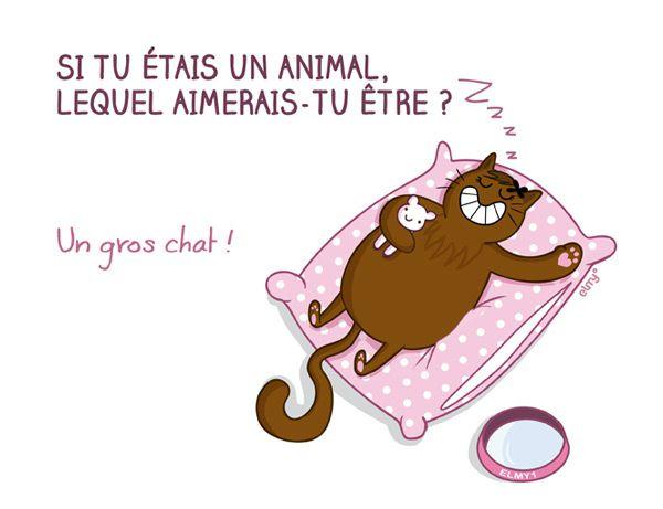 un_animal