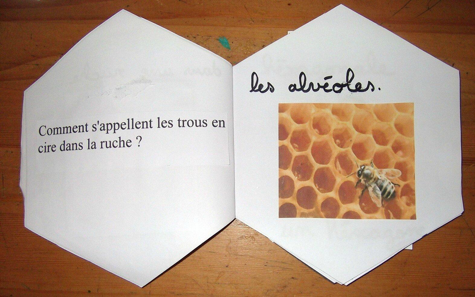 Favori les abeilles - madrassatoun PY88