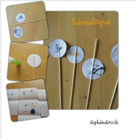 thaumatrope - juin 2011
