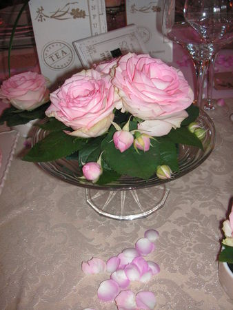 table_rose_f_te_des_m_res_040