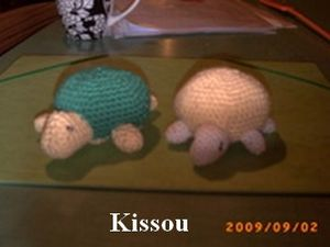 Kissoutortues