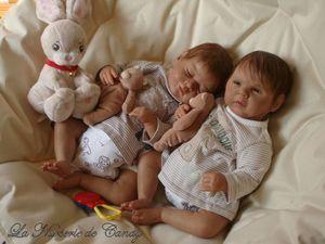 1 jumeaux reborn