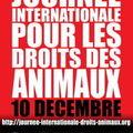 Journée internationale des droits des animaux - 10 décembre 2009
