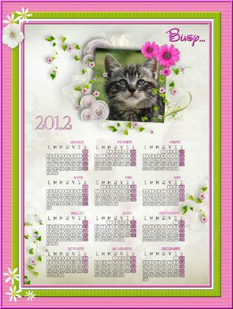 busy calendrier