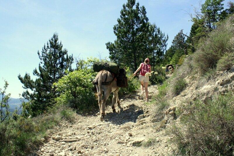 OK Corr'ânes 4 jours Vercors 175-002