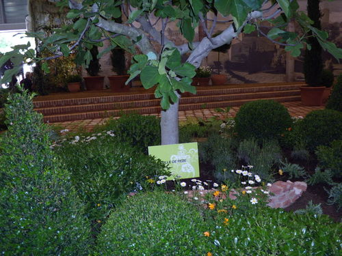 Floralies 097
