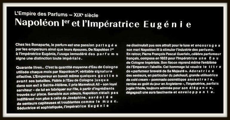 parfum (9)