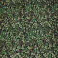 wiltshire berry vert