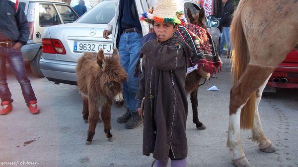morocco__106_