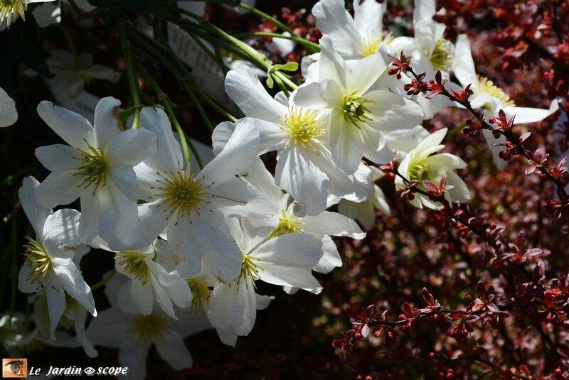 Parc-Floral-10