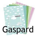 collection-gaspard