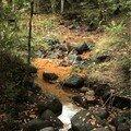 eau ferrugineuse à Ternant-les-Eaux
