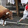 Additif à:la tauromachie et les courses de taureaux, degré zéro de la culture...!