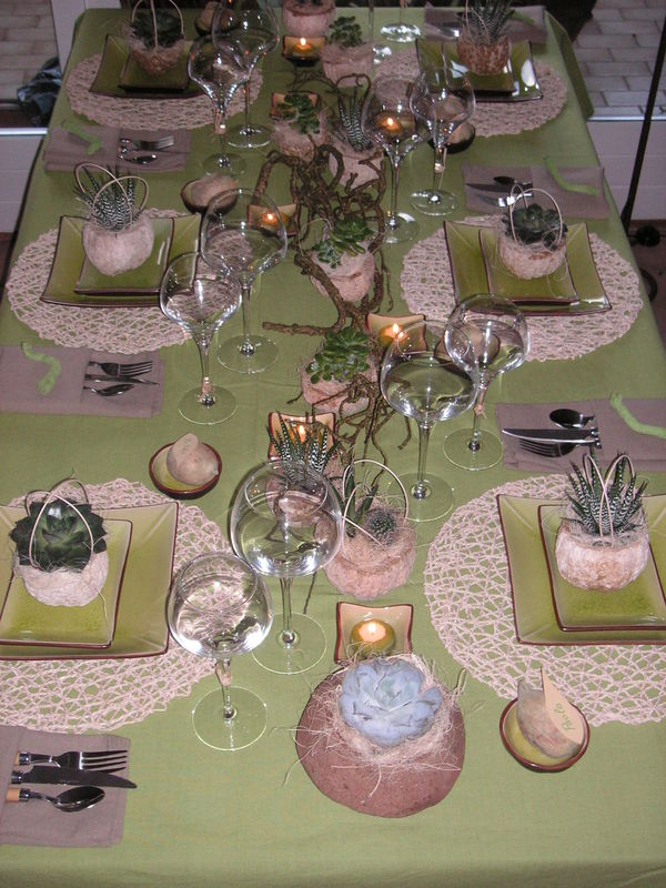 table plantes grasses a table c t d co. Black Bedroom Furniture Sets. Home Design Ideas