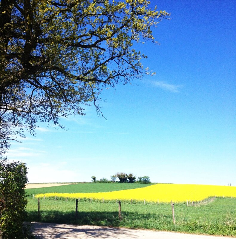 campagne3