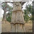 album_baobabs
