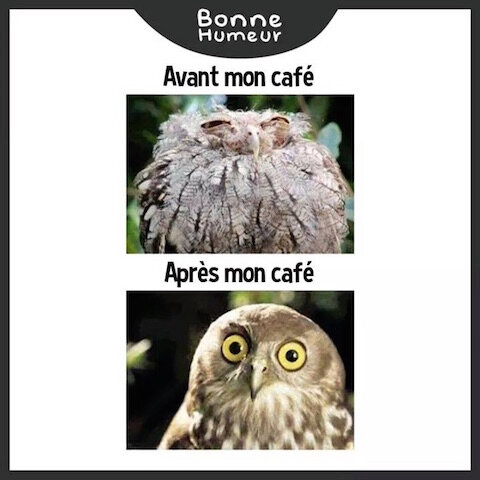 cafe humeur