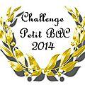 Bilan challenge petit bac 2014