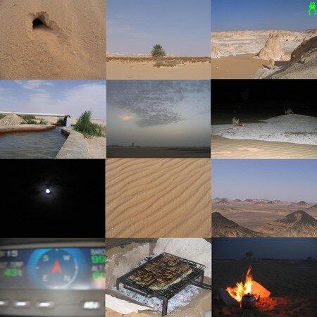 Desertmix