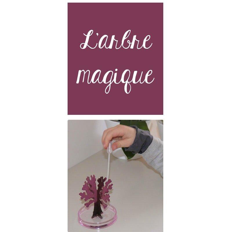 arbre magique 1
