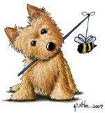 dog_bee2