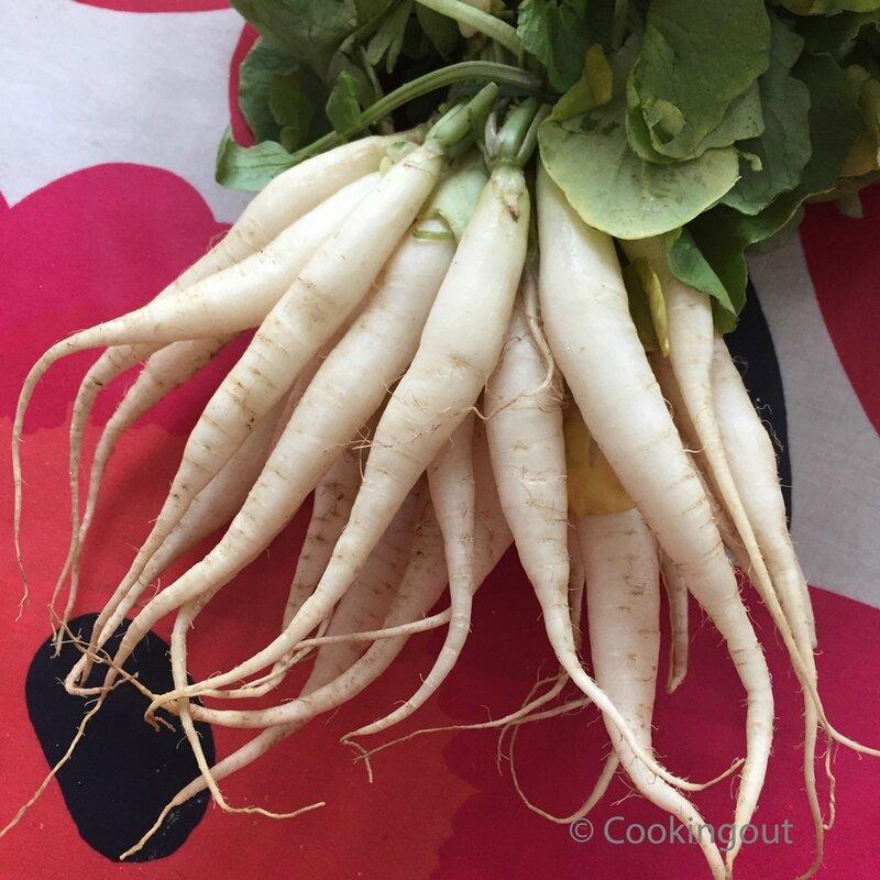 radis-blancs