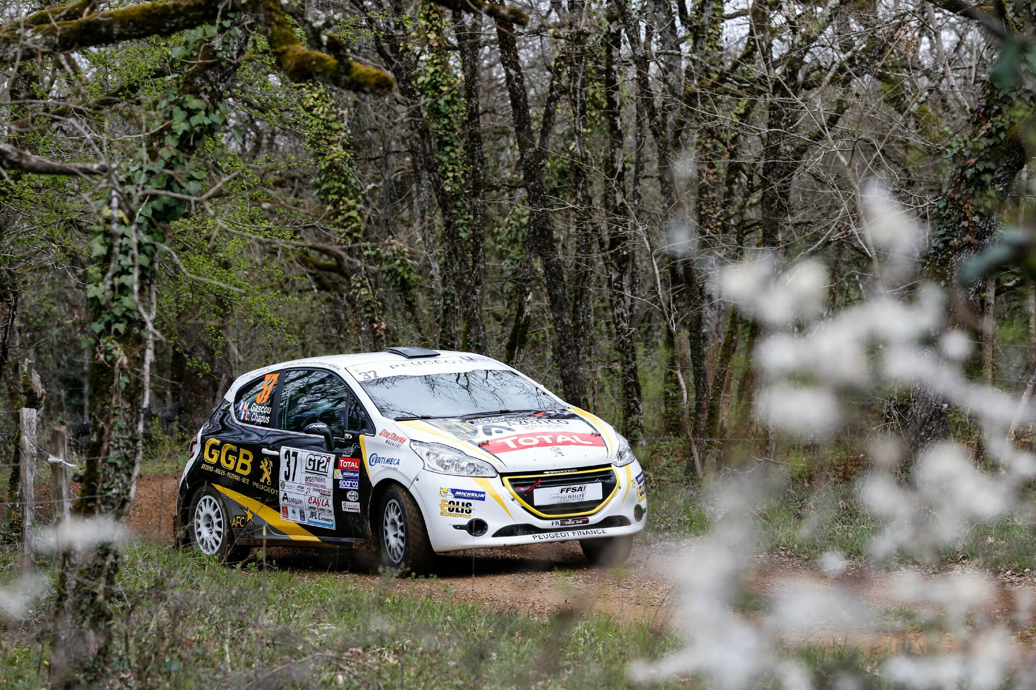 208 RALLY CUP : 4-5-6 avril 2015 / Rallye Terre des Causses (1/7)