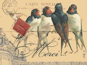carte_aux_oiseaux_merci