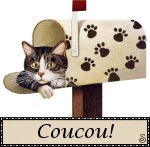 coucou_chat