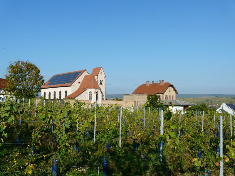 Dangolsheim (2)