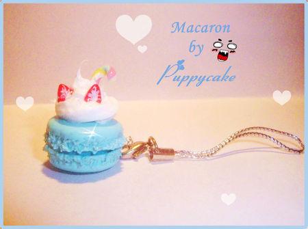 macaron_myrtille