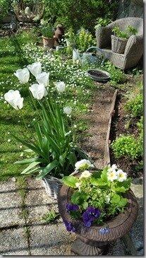 Windows-Live-Writer/Joli-printemps-au-jardin-_601C/20170402_133824_thumb