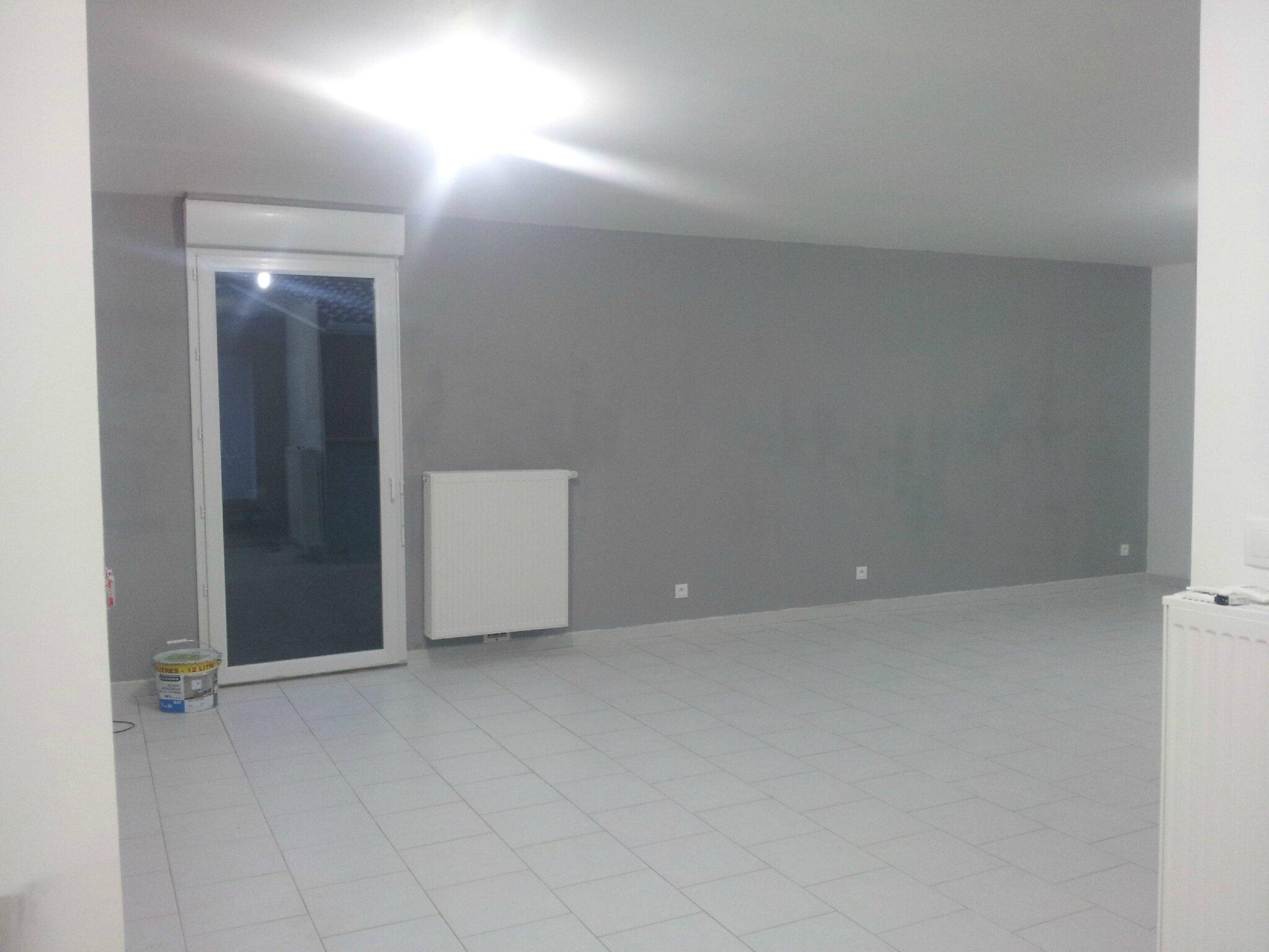 notre maison phenix dans le 31. Black Bedroom Furniture Sets. Home Design Ideas