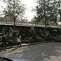 Marché aux fleurs paris