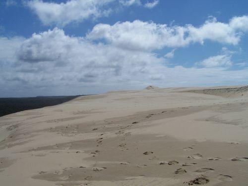 Dune du Pyla-côté Sud-Est