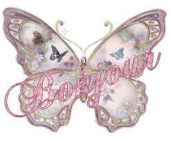 bonjour papillons