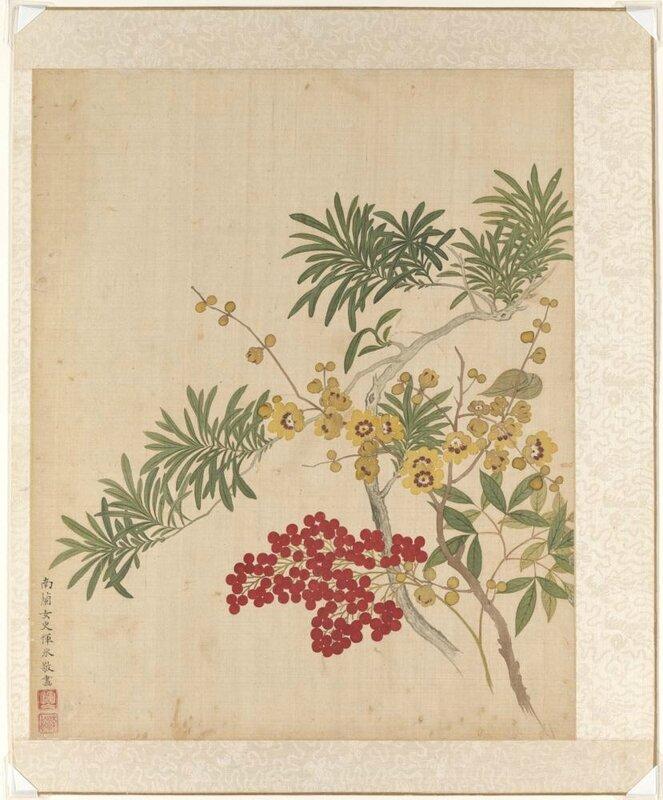 Wax plum, nandina, and Lohan pine