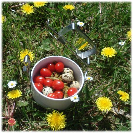 salade_de_printemps