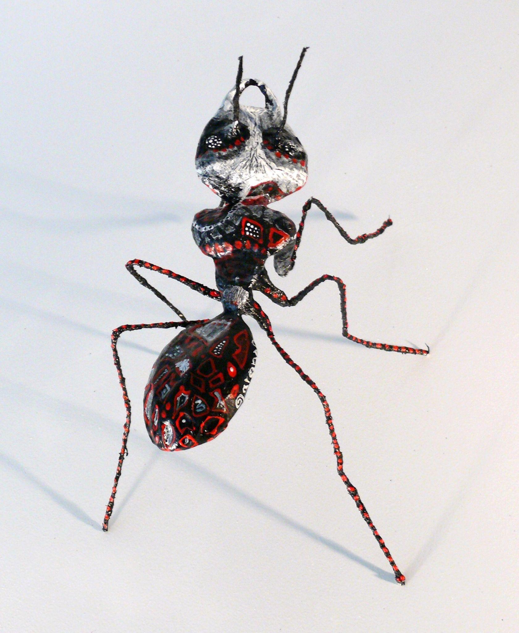 fourmie sorcière, hormiga bruja