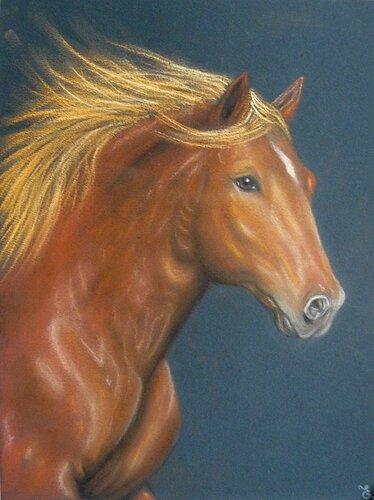 7717798_cheval-pastel