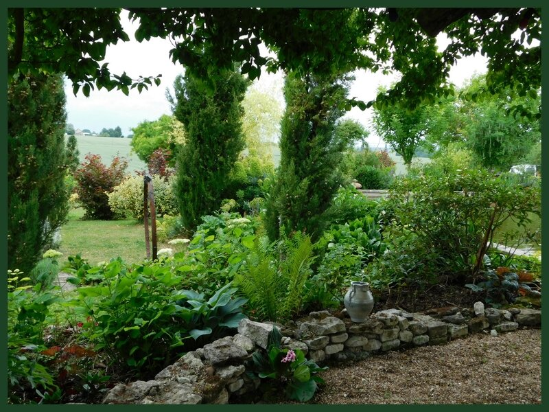 Fête des jardins Autour du cornus et héliotropes en Scévolles 03-063