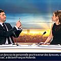 celinepitelet06.2014_01_15_premiereeditionBFMTV