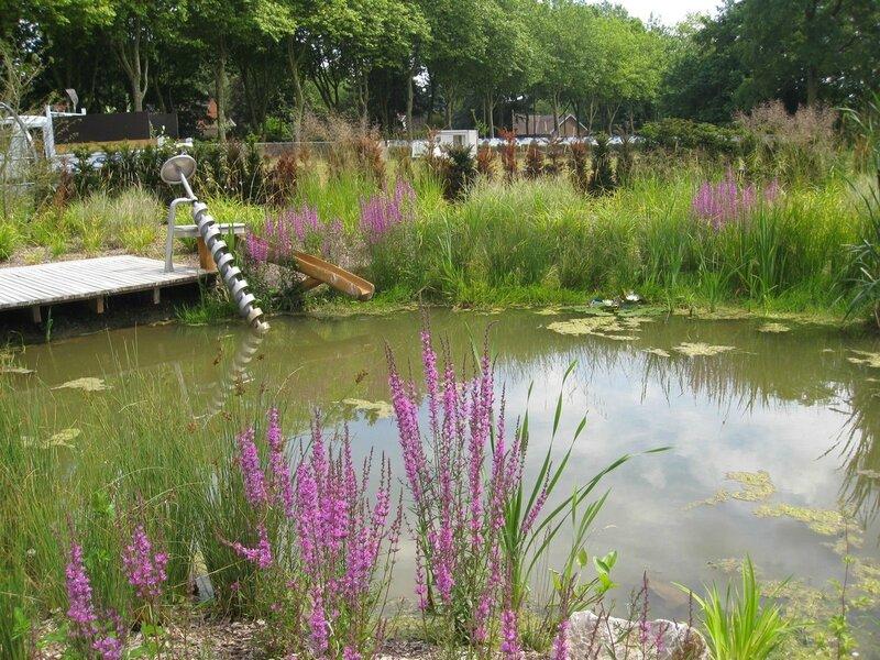 jardin aquatique Mallet-Stevens