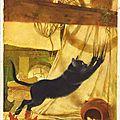 L'historien des chats