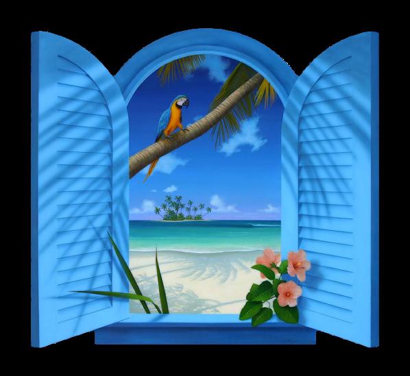 oiseau sur fenêtre