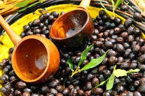 olives-noires