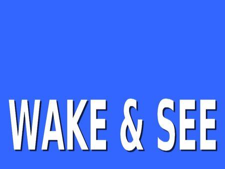 wake_see