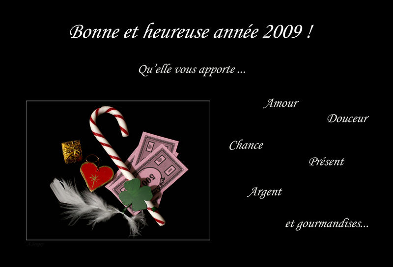 bonne_annee_2009
