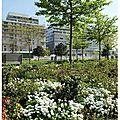 Parc de Billancourt 23