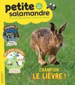 Petite Salamandre avril-maii 17